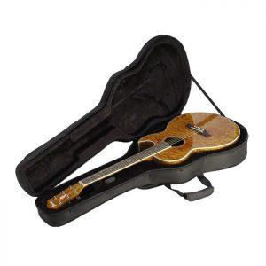 f63054d134 SKB Explorer/Firebird Guitars Soft case with EPS foam